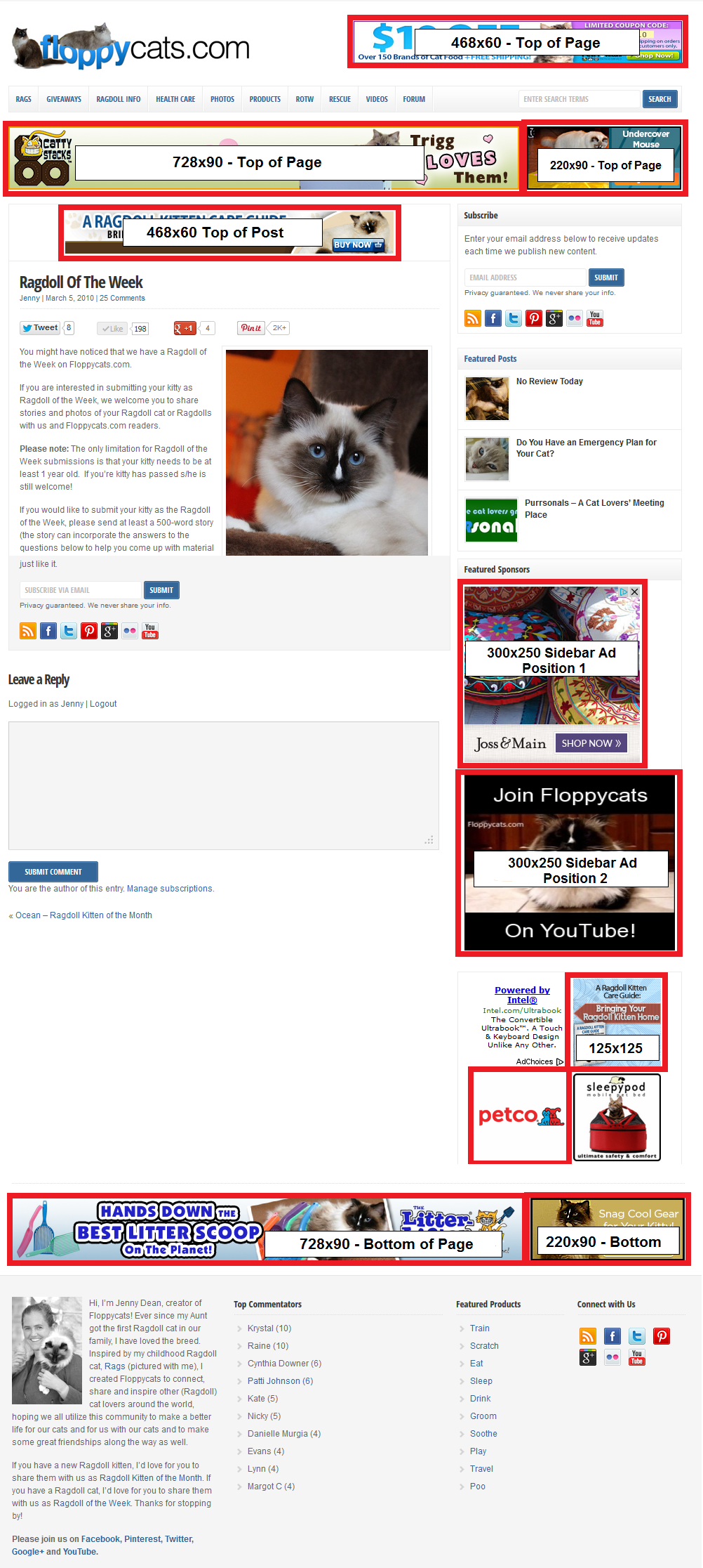 Floppycats Advertising 2013 with 468x60 Top of Post