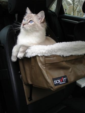 pet booster seat by solvit products. Black Bedroom Furniture Sets. Home Design Ideas