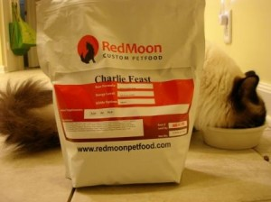charlieeatingredmoon 300x224 RedMoon Custom Pet Food   Review Of Charlie Feast
