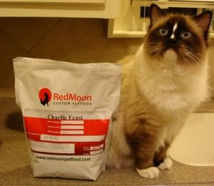 charliemodel2 300x261 RedMoon Custom Pet Food   Review Of Charlie Feast