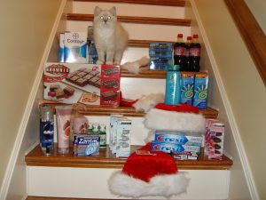 Trigg with my haul in December 2009