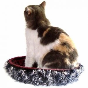 Hand Knit Peruvian Highland Wool Felted Cat Bed Cat Napper Ghengis2 300x300 Interview with Kathy Bennett of WraptCats Etsy