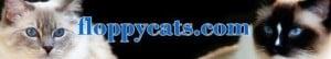 Floppycats.com's Banner Sept 2010 - Present