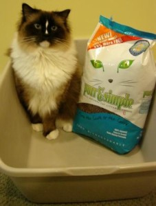 Charlie and Purr and Simple All-Natural Cat Litter Kwik Klump Formula