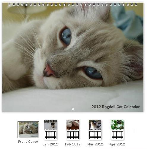 """2012 Ragdoll Cat Calendar for Your Wall 11 x 8.5"""" Landscape - Coil Bound"""