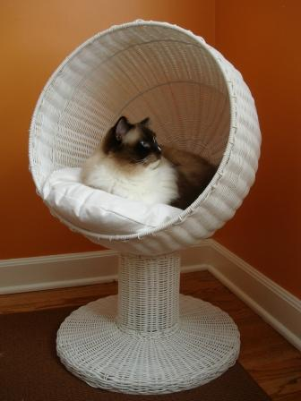 The refined feline kitty ball modern cat bed product review for Designer cat beds uk