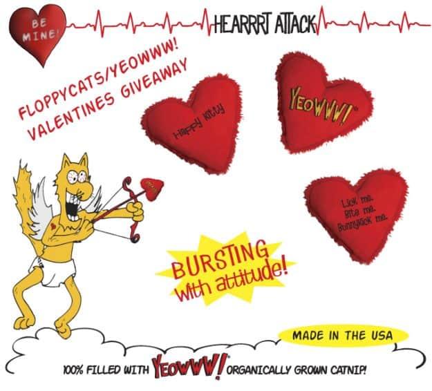 Yeowww! Catnip Valentine's Day Giveaway