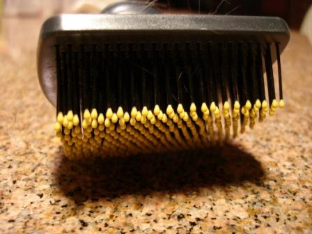 JW Pet Company GripSoft Cat Brush pins