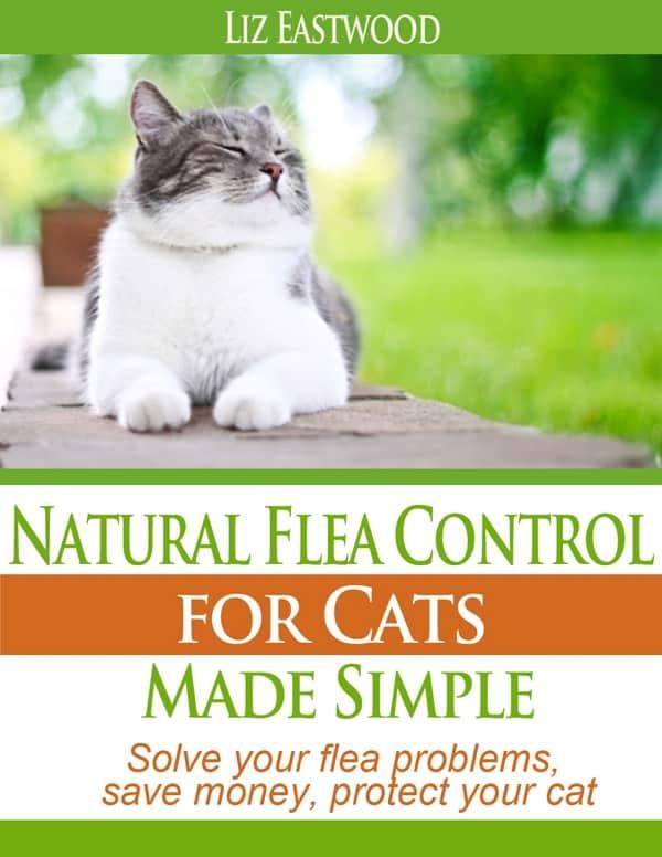 Best Natural Cat Flea Control