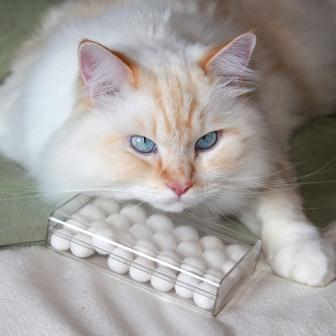 """Here he guarding a box of """"soft white pearls"""""""