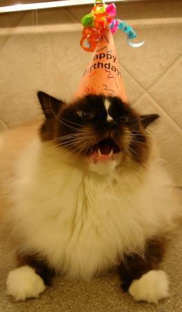 Birthday Boy 2012 mouth open