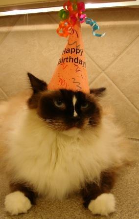Charlie Birthday Boy 2012