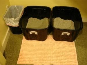 Litter Box Setup August 2012