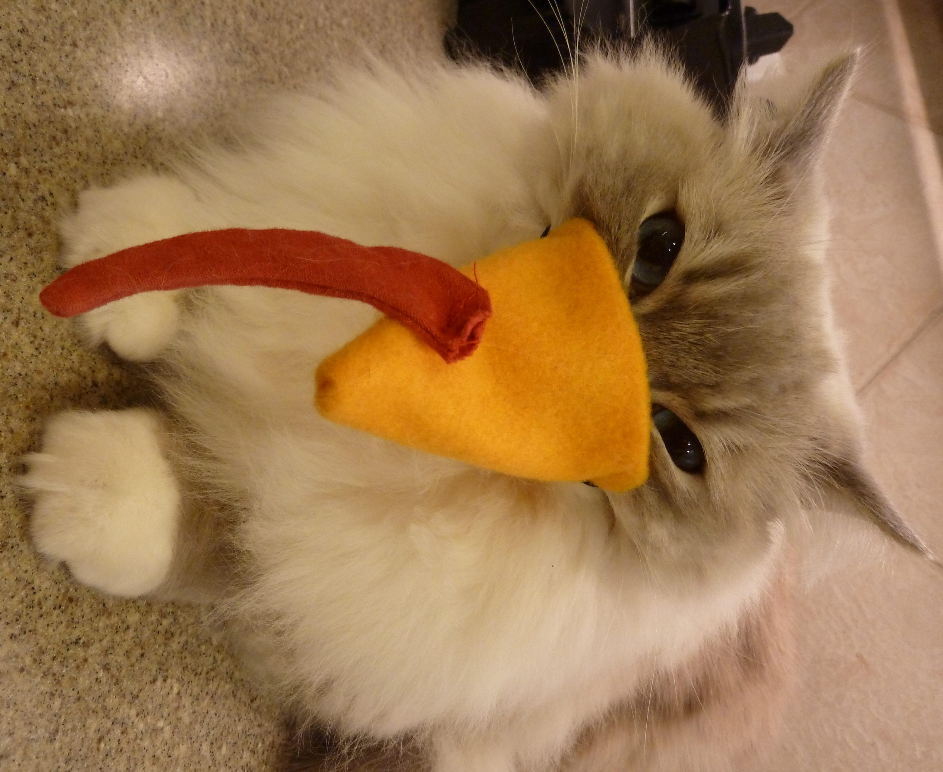 Chiggy Furry Turkey