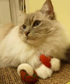 Trigg with Moderncat Studio Holiday Lynks Felted Wool Cat Toys