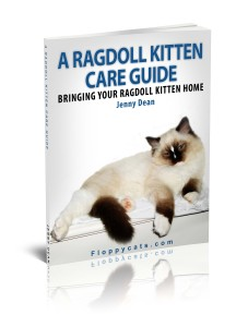 A Ragdoll Kitten Care Guide Kindle Edition FREE Until Feb 18!