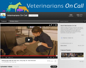Vets on Call