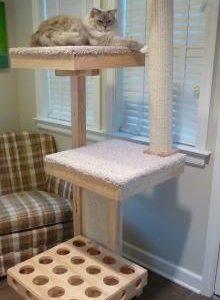 Cat Power Tower Modern Cat Tree Review – UPDATE!