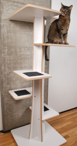 Looking For An Eco Friendly Cat Tree