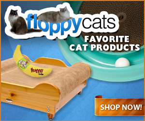 Floppycats Favorite Products