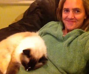 Ragdoll Cat Charlie on Belly Lap Lap Cat