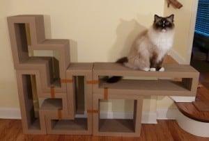 Katris Modular Cardboard Cat Scratcher Furniture Review by Floppycats