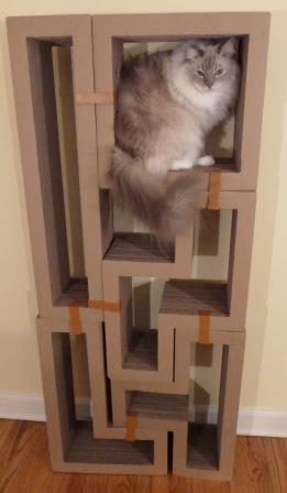 Katris Modular Cardboard Cat Scratcher Furniture Review by Floppycats3