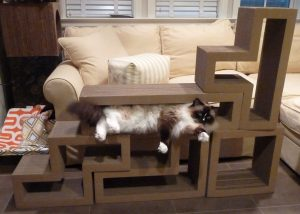 Ragdoll Cats Receive Papercut Lab Katris Cardboard Cat Scratchers for Review - ねこ - ラグドール - Floppycats