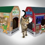 Introducing MEOWSES – Fun Cat Houses