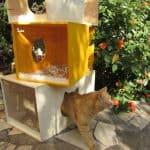 Qcha: Modular Cat Tree Tower