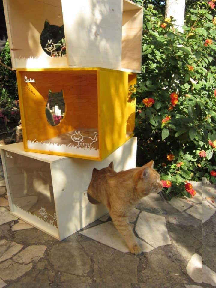 Qcha Modular Cat Tree Tower 6