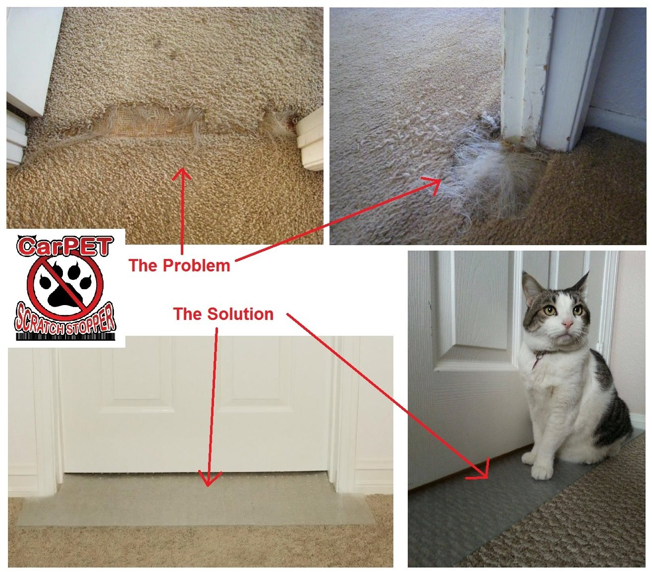 How To Stop Cat Scratching Carpet On Stairs Lets See