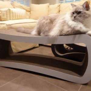 Corrugated Cardboard Cat Scratchers Petfusion Cat Scratcher Lounges