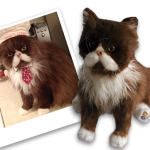 Cuddle Clones: Plush Replicas of Your Cat + Interview with Founder, Jennifer Williams