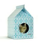 Petbo: Designer Playhouses for Cats