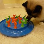 Petmate Jackson Galaxy Collection Go Fish Cat Toy Product Review