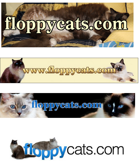Floppycats Banner Through the Years