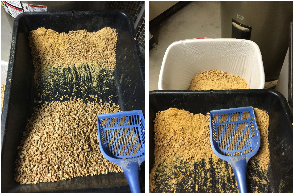 How To Use Pine Pellet Cat Litter