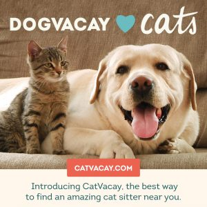 CatVacay : Find Pet Sitters Online