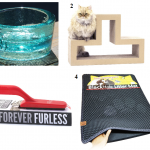 Cat Product Testimonials Needed for PawNosh, Katris, Lilly Brush BFF and Blackhole Littermats