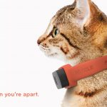 Nuzzle: A GPS Tracking Pet Collar, App and Insurance