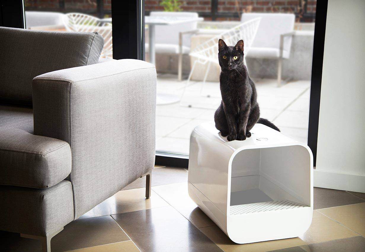 Grand poobox modern style covered litter box kickstarter campaign - Modern kitty litter box ...