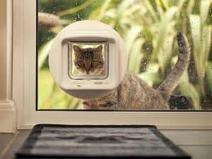 SureFlap Microchip Pet Door 2