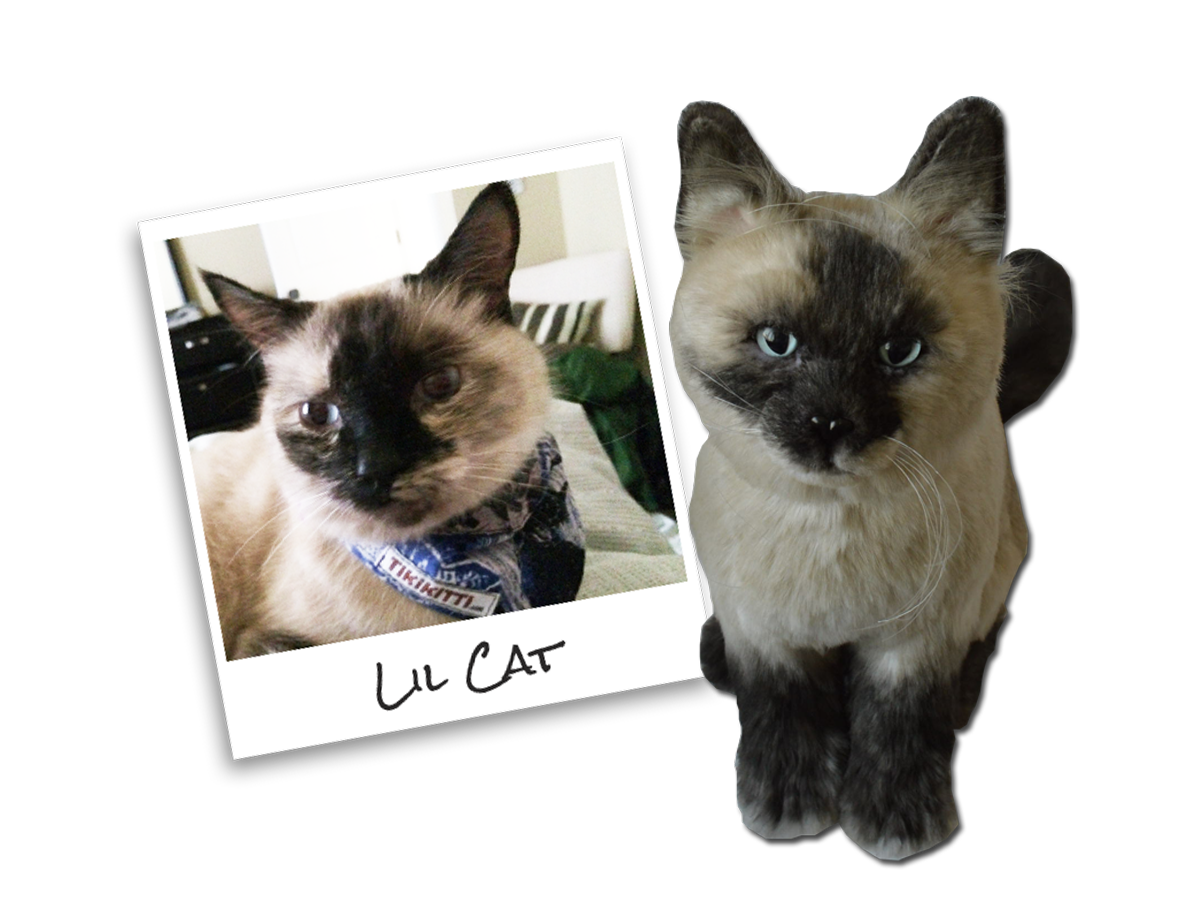 Coupon Code for a Plush Cuddle Clone LitteCatComp