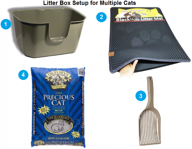 Litter Box Setup for Multiple Cats - Floppycats Version