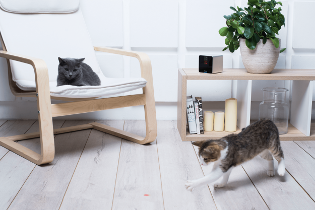 Petcube Wi-Fi Pet Camera