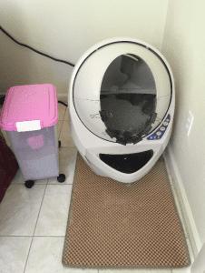 Litter Robot Open Air Reader Review
