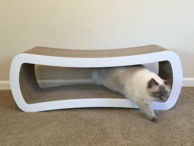 Reader Cat Product Review PetFusion Jumbo Cat Scratcher Lounge 3