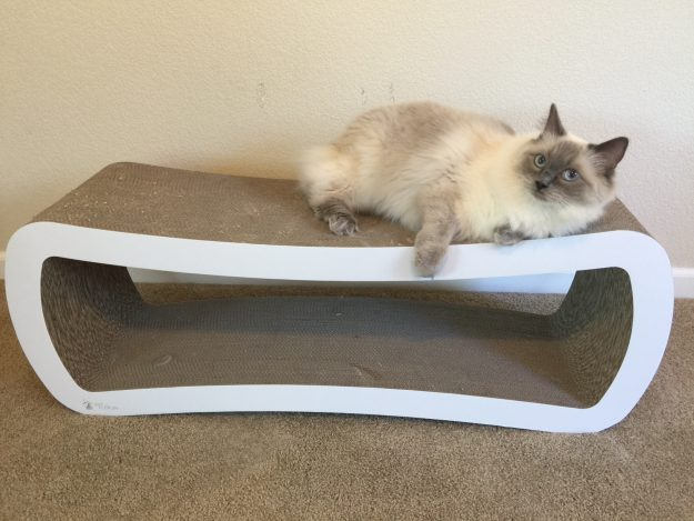 Reader Cat Product Review PetFusion Jumbo Cat Scratcher Lounge 4