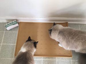 WooPet Cat Feeding Mat Product Review 3